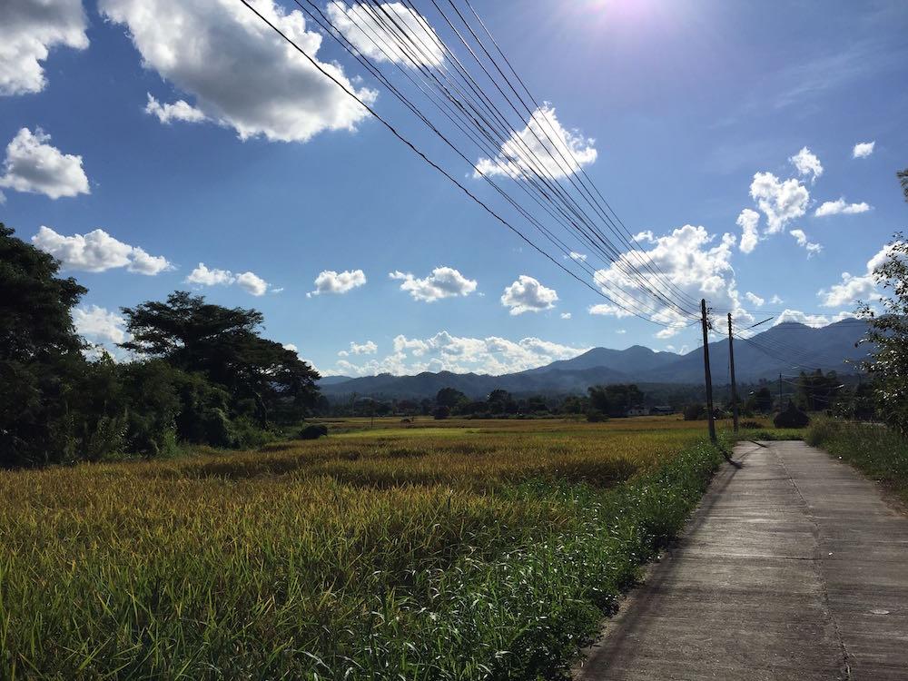Blog road home
